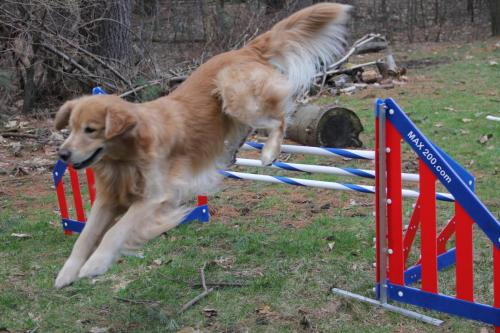 Practicing Agility